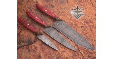 Handmade Damascus Steel kitchen Knives Set - Gladiatiators Guild - Wood Handle