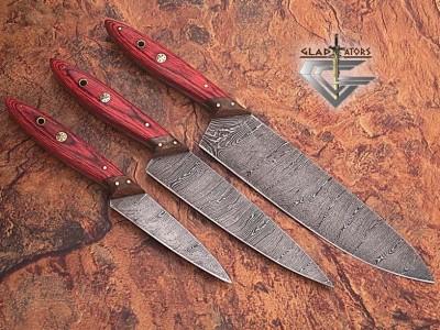 Handmade Damascus Steel kitchen Knives Set - Gladiatiators Guild - Wood Handle